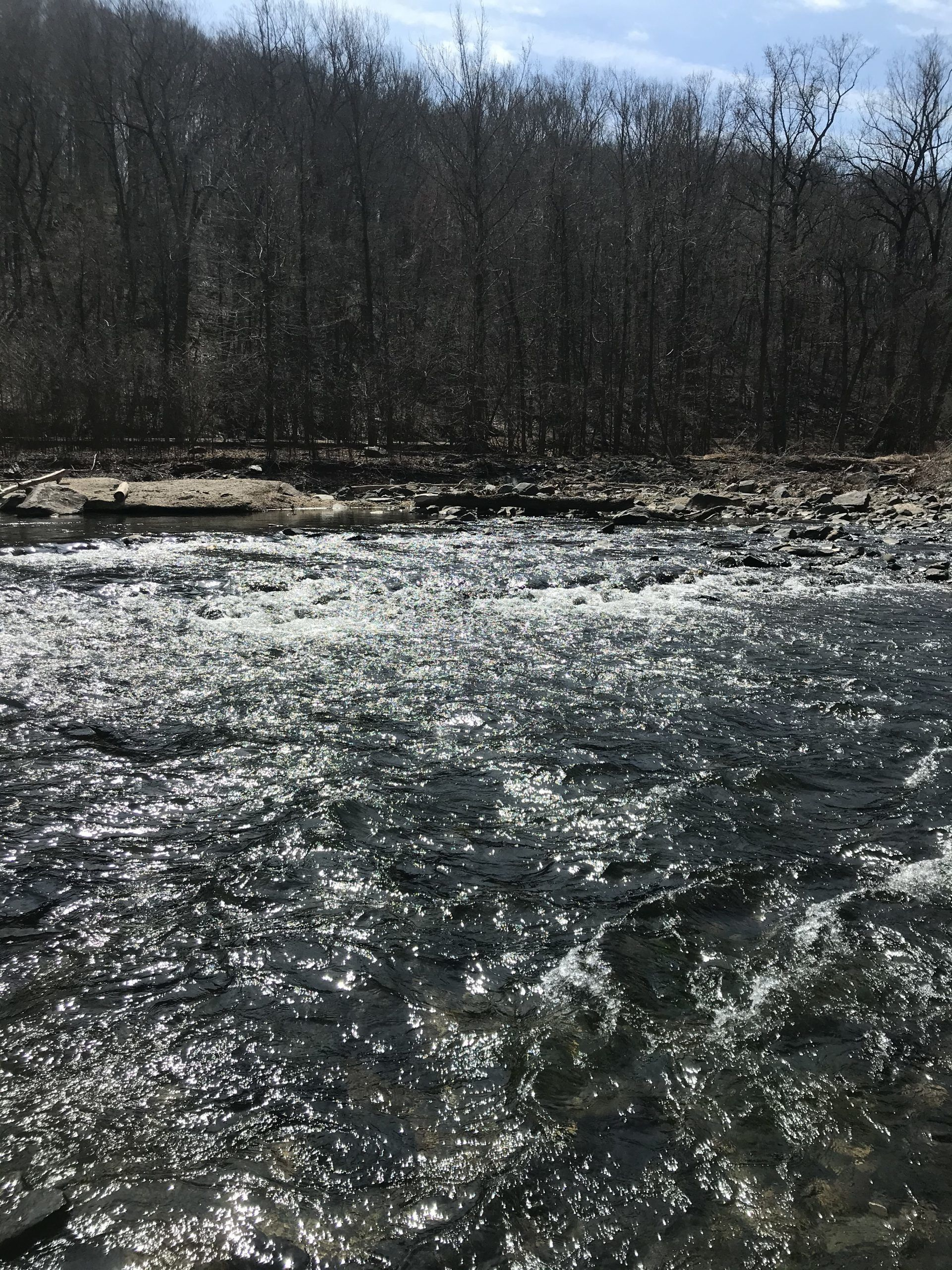 Show the river at Patapsco River Valley